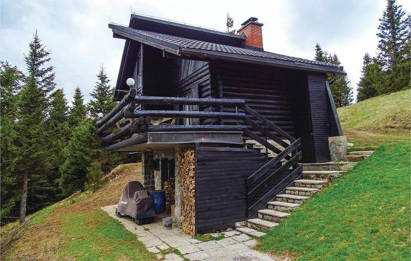 3 Zimmer Unterkunft in Smartno pri Sl.Gradcu, vacation rental in Oberhaag