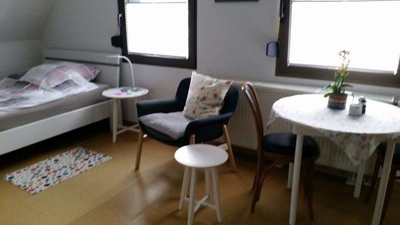 Ferienwohnung/App. für 3 Gäste mit 26m² in Hilden (118303), holiday rental in Solingen