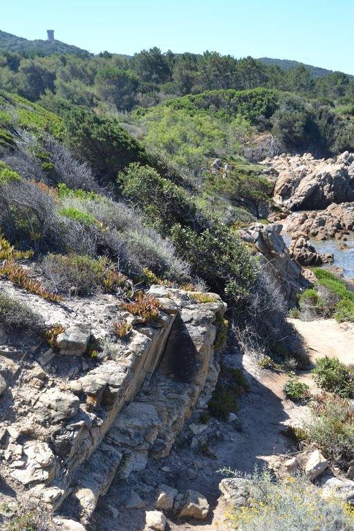 coastal path of Cupabia
