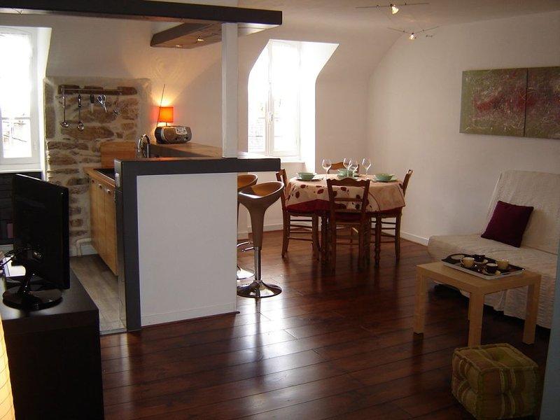Bel appartement de caractère, clair et calme avec vue sur mer, location de vacances à Plogonnec