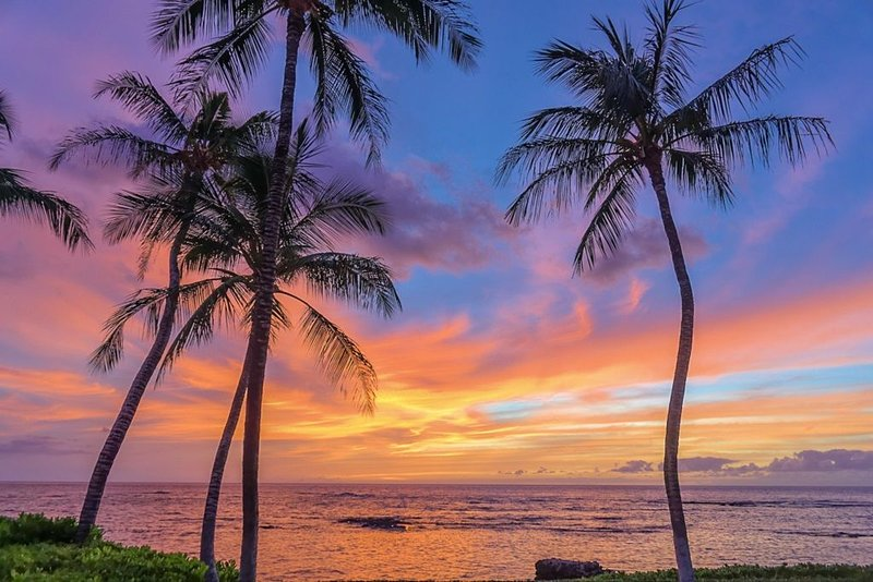 4 Bedroom Ocean Front Home with a Sandy Beach, location de vacances à Kamuela