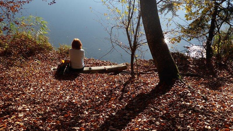 Tiempos tranquilos y contemplativos en el lago; Pura relajación!