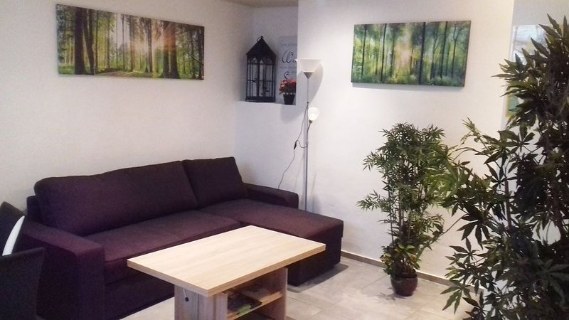 Sinsheim zentral - Mittendrin & total ruhig, holiday rental in Sinsheim