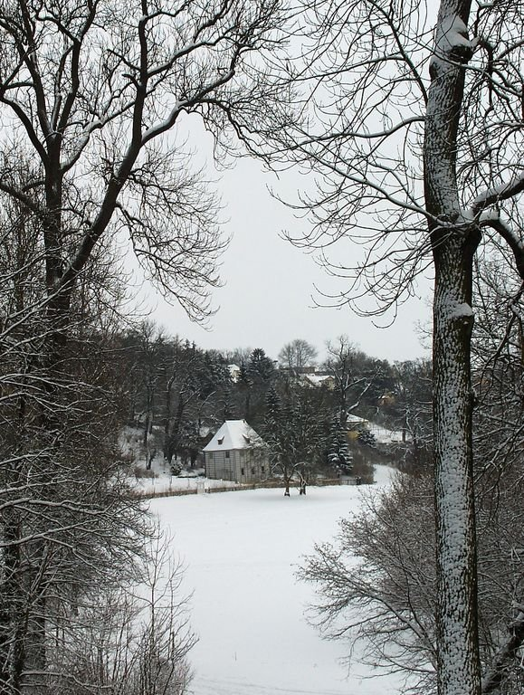 The silent park in the snow