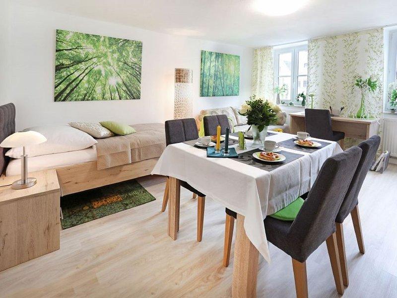 Neu renovierte Ferienwohnung im historischen Stadtkern von Landshut, holiday rental in Landshut