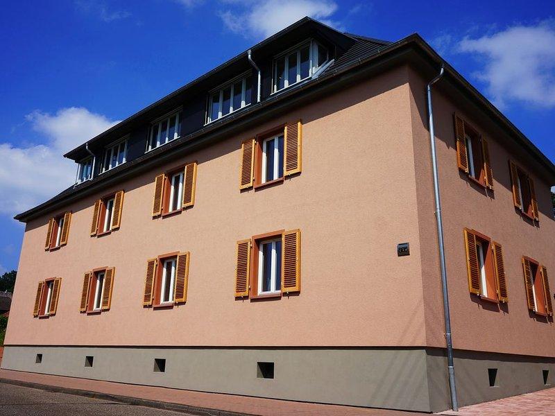 Vier-Sterne-Wohnung auf 180 qm mit Elektroauto, location de vacances à Rodalben