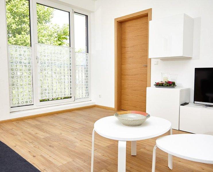 Modernes 48qm Apartment mit französischem Balkon, kostenfreies WLAN, komplett au, vacation rental in Ebern
