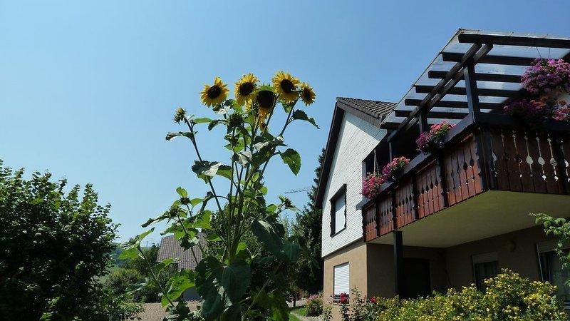 Ferienwohnung/App. für 2 Gäste mit 35m² in Weilheim (116856), vacation rental in Endingen