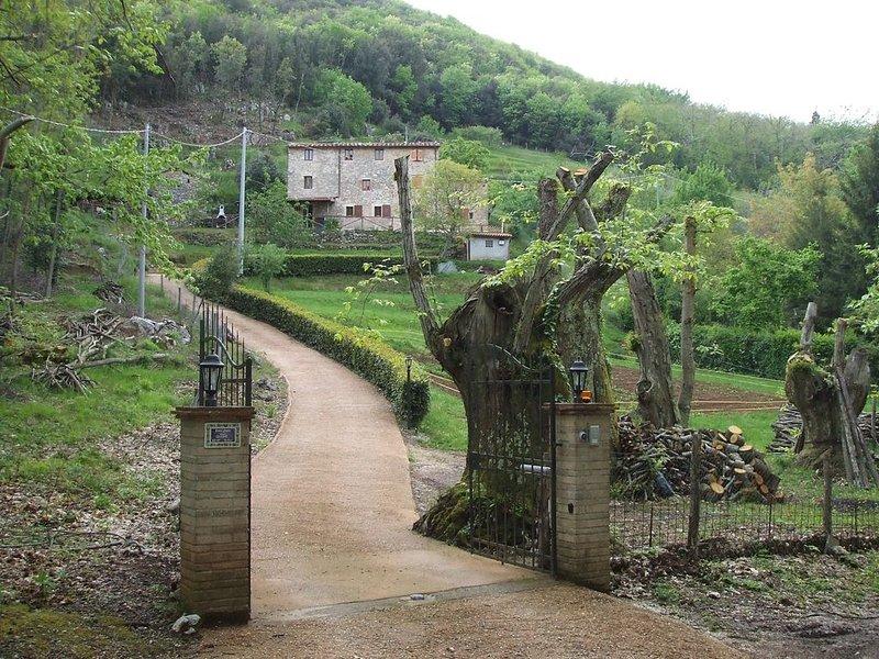 Rustico mit Pool, großem Grundstück, Garten, Terrasse für 6 Personen, holiday rental in Orbicciano