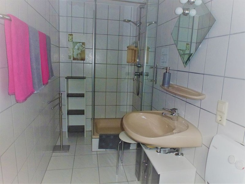 Shower and toilet in the basement