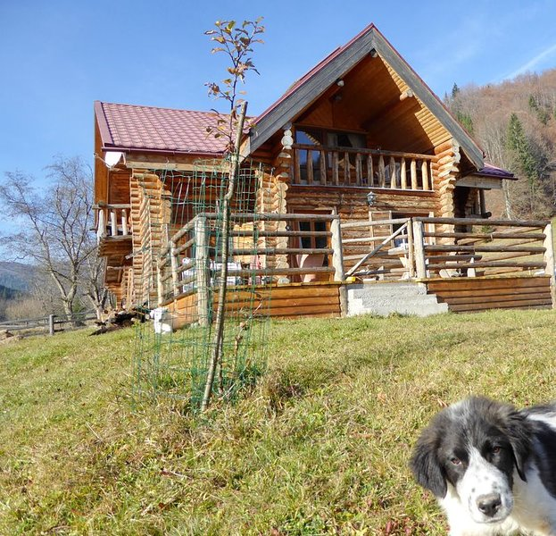 romantisches Blockhaus in den Karpaten, vacation rental in Rucar