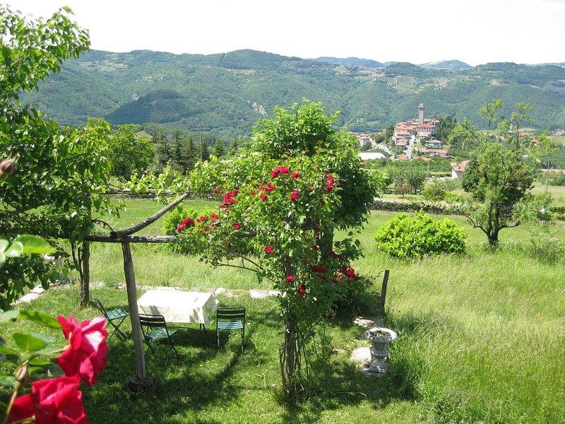 Idylisch gelegenes Landhaus mit schönem Weitblick (zwei Hausteile), holiday rental in Bergolo