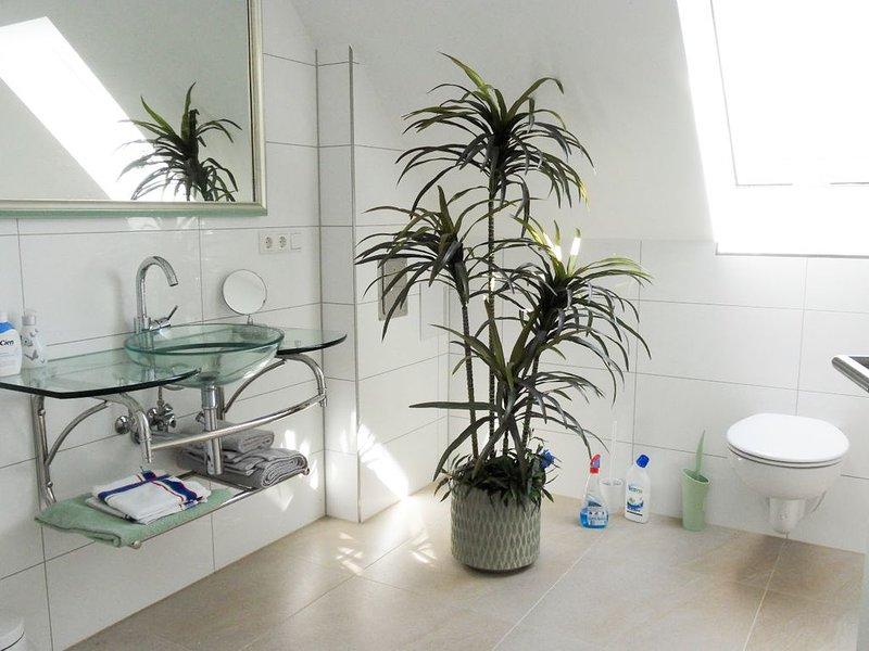 Ferienwohnung 1A, 67qm, Sonnenterrasse mit Liege, 1 Wohn-/Schlafzimmer, max. 2 P, holiday rental in Moetzingen