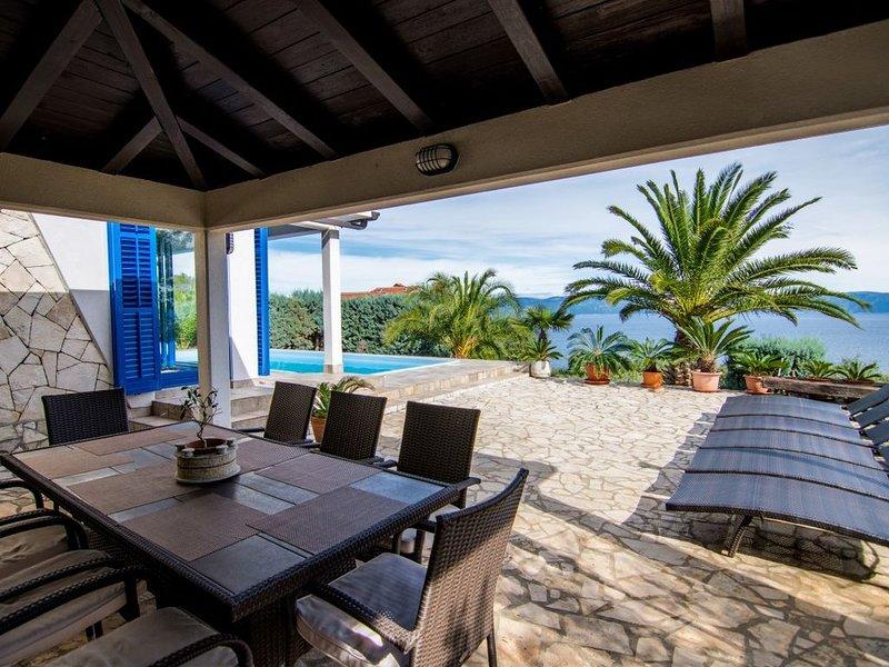 Traumhafte Villa mit tollen Swimmingpool und super Meerblick, location de vacances à Ravni