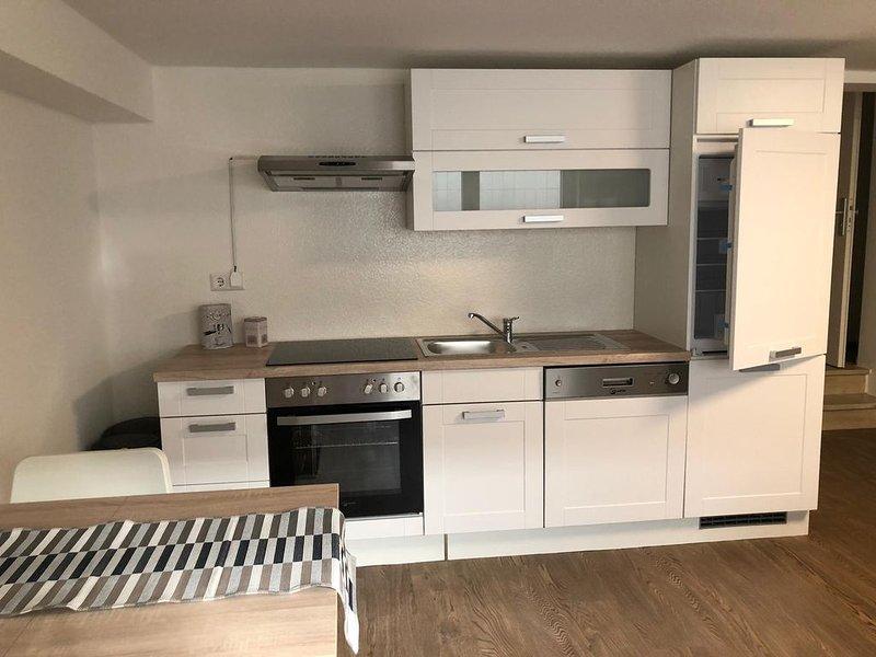 Große Souterrain-Wohnung mit Küchenzeile und Bad, zentral gelegen,, vacation rental in Schwetzingen