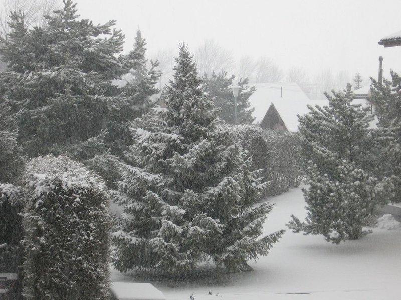Paisagem de inverno por trás de nosso chalé 'Haselstaude'