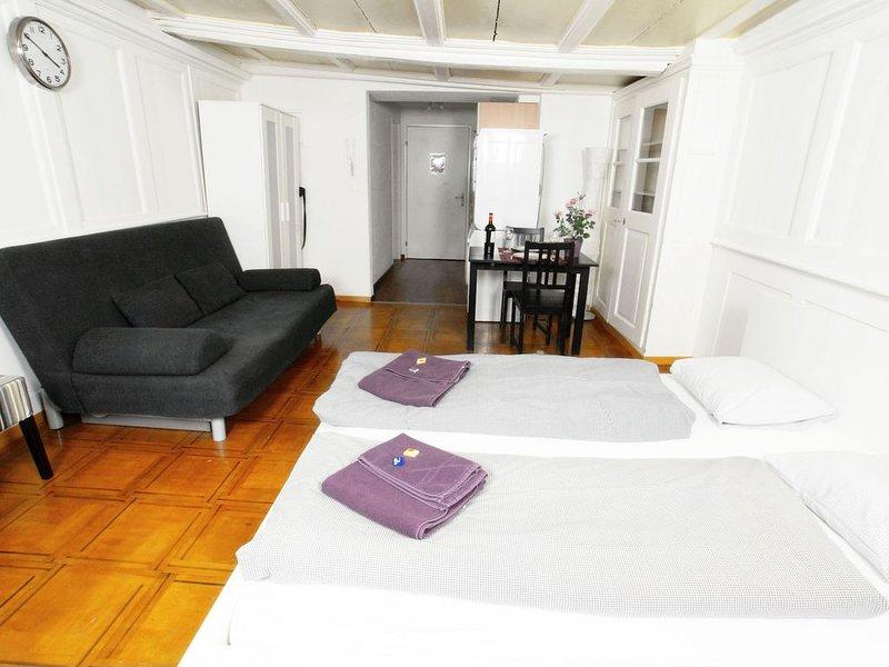 ZH Niederdorf II - HITrental Apartment, holiday rental in Regensberg