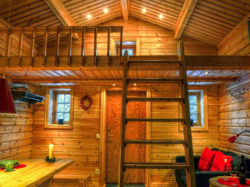 Bungalow für 4 Gäste mit 40m² in Sorsele (95138), vacation rental in Vasterbotten County