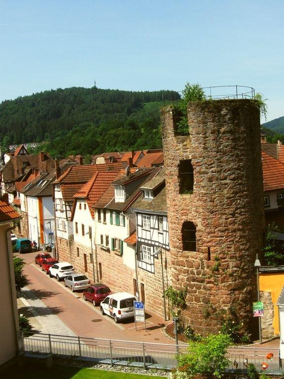 La tour de la rose vue depuis la fenêtre