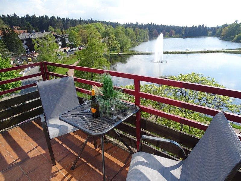 Ferienwohnung/App. für 3 Gäste mit 32m² in Hahnenklee (95760), holiday rental in Hahnenklee-Bockswiese