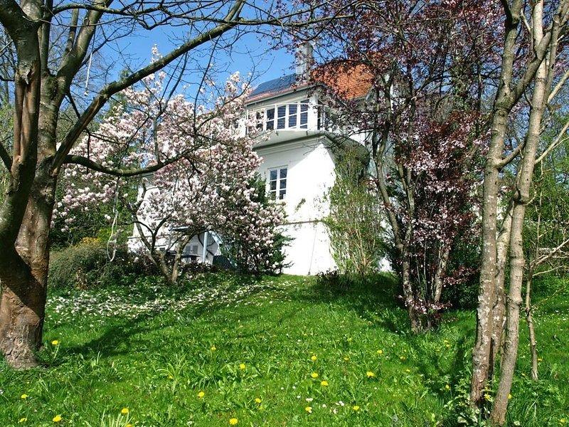 Erdgeschosswohnung in wunderschöner Altbauvilla, holiday rental in Feldafing