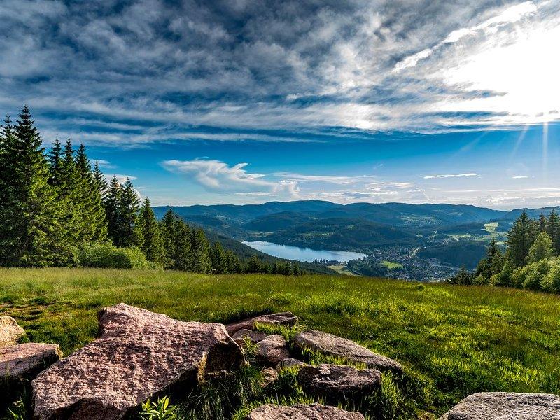 Natur pur  inmitten vom Hochschwarzwalld- 10min zum Feldberg&Titisee&Schluchsee, vacation rental in Saig