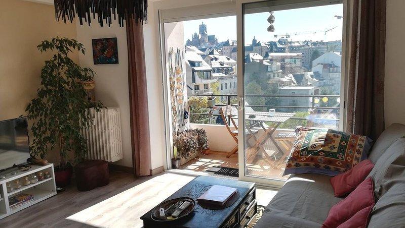 Charmant T3, proche musée, vue cathédrale, balcons, vacation rental in Onet-le-Chateau
