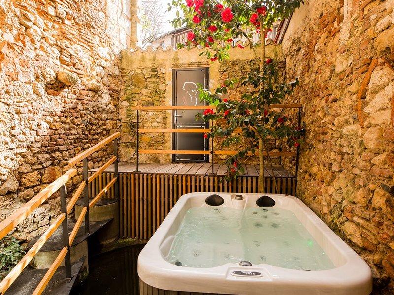 Appartement de charme au coeur de bergerac, location de vacances à Lembras