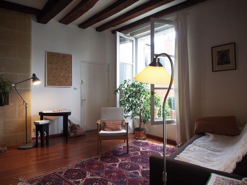 Location Appartement Calme Et Lumineux, Tours Centre, Cathédrale, location de vacances à Saint-Pierre-des-Corps