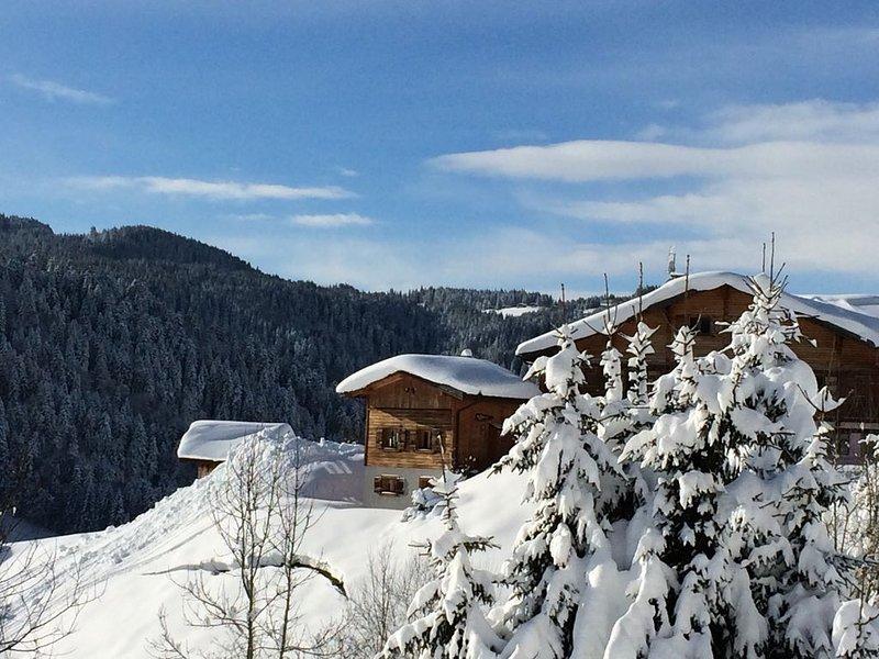 Les Gets / Haute-Savoie chalet individuel pour 5 personnes avec Sauna, vacation rental in Les Gets