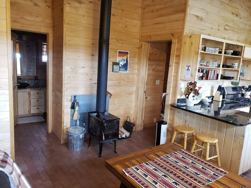 Super bowl saving 2 bdr log cabin near fishing, golf, shopping,recreation center, holiday rental in Pagosa Springs