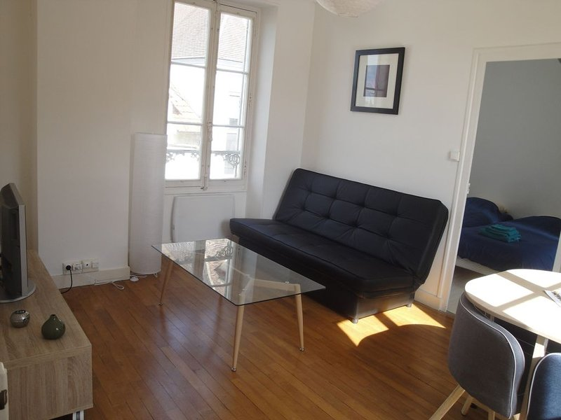 Appartement de charme Coeur de ville, holiday rental in Villiers-sur-Tholon