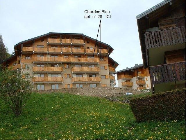 COL-CHAR-28 : 3 pièces avec vue magnifique sur les montagnes, holiday rental in Vacheresse