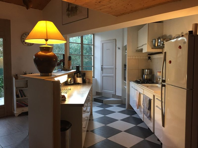 Maison du Sud avec Grand Patio Verdoyant, holiday rental in Marsillargues