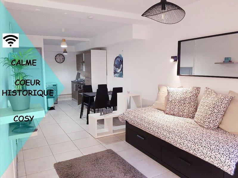 ★ STUDIO HYPER CENTRE, CALME & COSY ★, vacation rental in Bartres