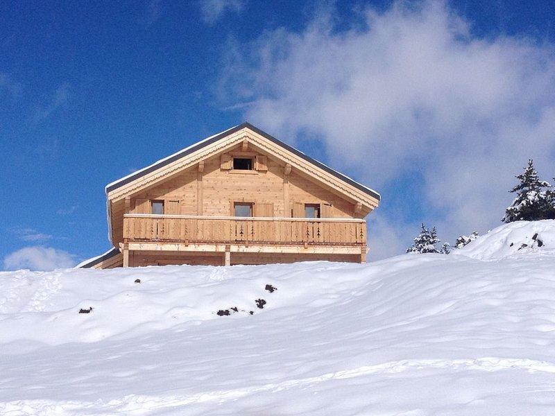 Chalet neuf haut de gamme 200 m2 (ménages, draps et serviettes compris), holiday rental in Lalley