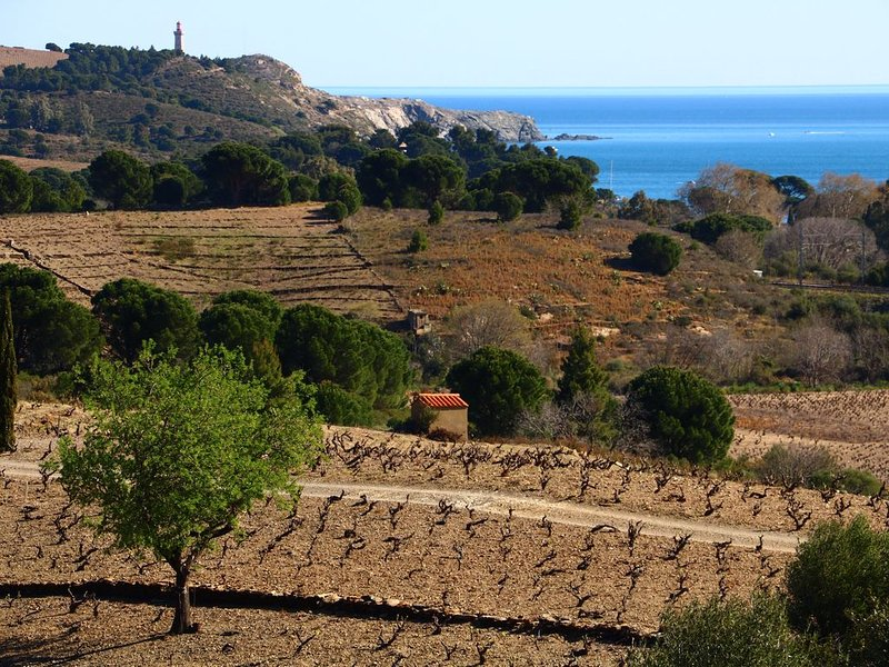 Joli appartement dans village catalan proche mer, alquiler de vacaciones en Port-Vendres