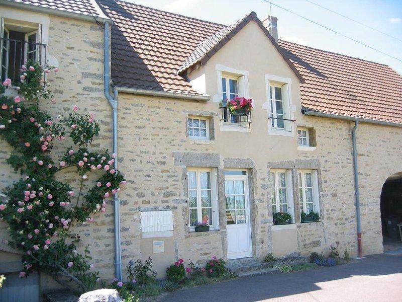 MAISON VIGNERONNE DE CHARME ENTIEREMENT RESTAUREE, holiday rental in Saint-Sernin-du-Plain