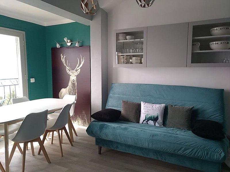 Superbe appartement avec balcon et vue panoramique sur les montagnes, location de vacances à Font-Romeu-Odeillo-Via