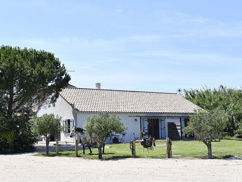 Gîte en Camargue, chevaux, nature et détente, holiday rental in Albaron