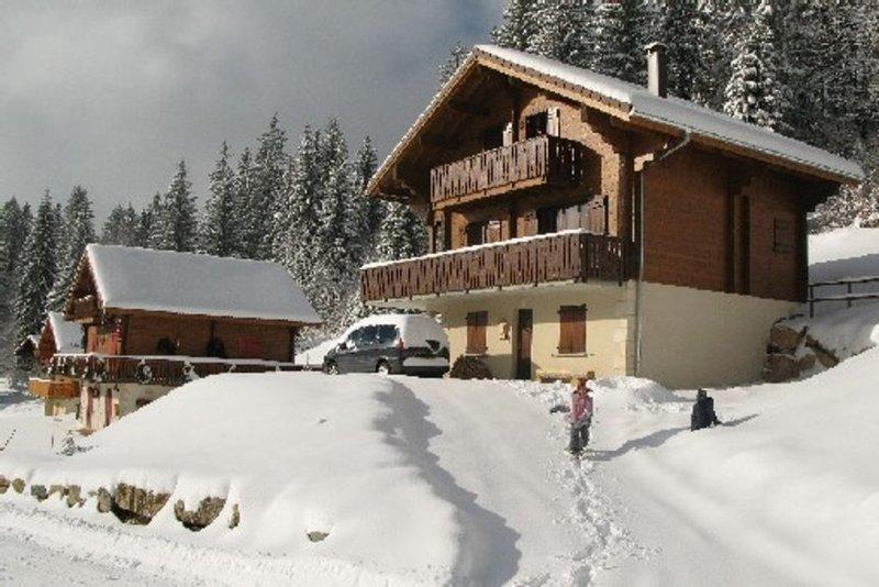 Chalet de montagne, les Rousses - Lamoura, location de vacances à Les Rousses