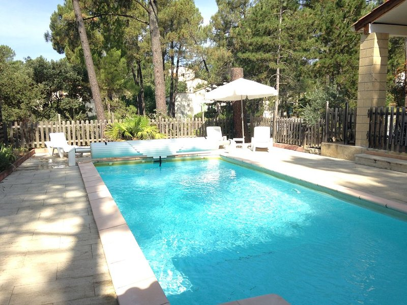 Villa avec piscine, sous les pins à Bédoin, en Provence, holiday rental in Flassan