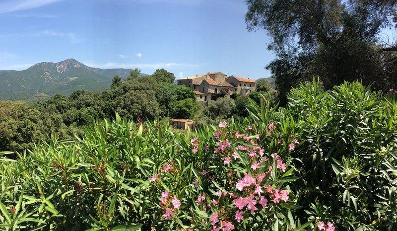 À Casa Fiurita - Hameau d'Eccica, holiday rental in Cuttoli-Corticchiato
