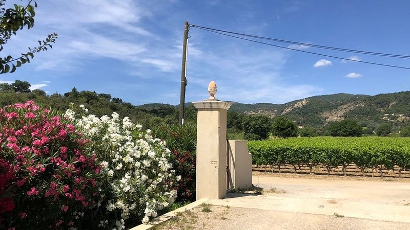 Access to the Mas from the vineyard path with a magnificent view of the vineyard
