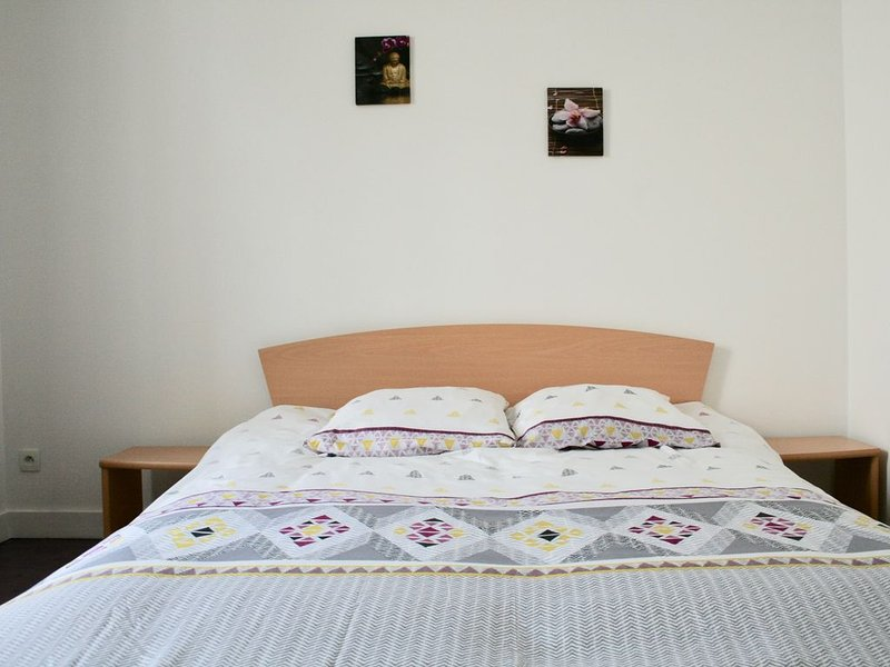 Magnifique T3 centre, holiday rental in Champigny-en-Beauce