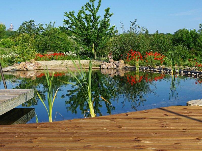 Les bleuets et sa piscine naturelle, vacation rental in Vianne