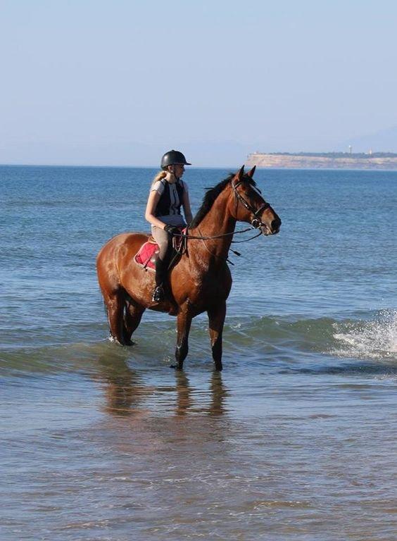 Port la Nouvelle - 1h de la cabaña La felicidad de un paseo a caballo