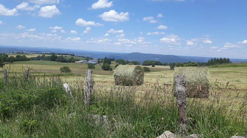 Gite à la ferme en Auvergne , entre Sancy et Puy Mary, holiday rental in Margerides