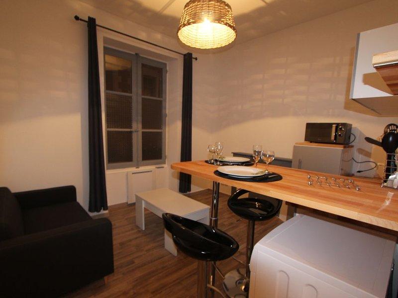 Appartement au cœur du centre ville de Blois, holiday rental in Champigny-en-Beauce