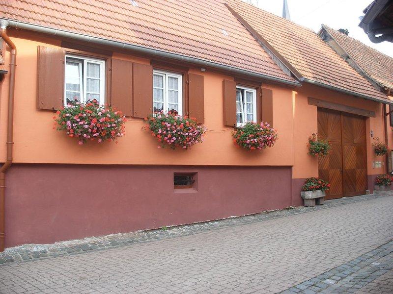 Location gite maison à Westhoffen Schwartz Jacqueline Route des vins 67 Alsace, holiday rental in Dahlenheim